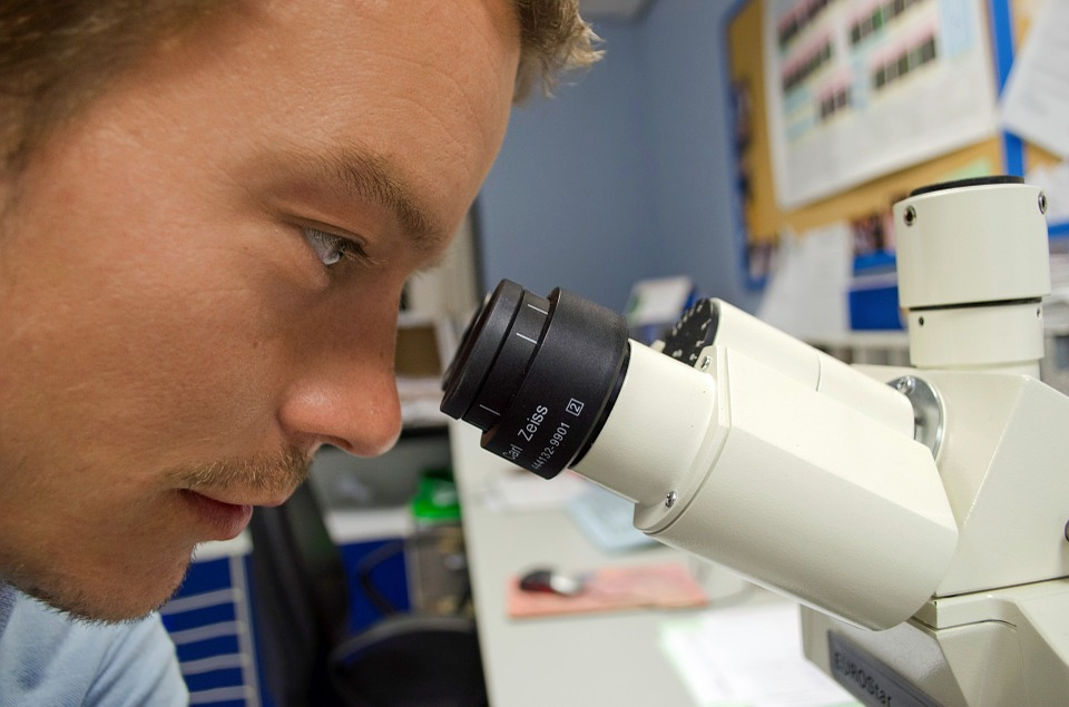 Instituições iniciam o mapeamento das startups envolvidas na área de biotecnologia - foto: Pixabay