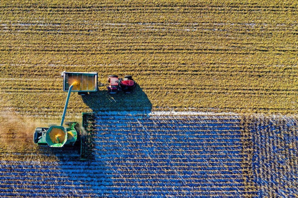Inflação em queda, taxas de juros baixas e relativa recuperação de empregos e a produção agrícola são apontados como sinais positivos para o país em 2020. Foto por Tom Fisk em Pexels.com