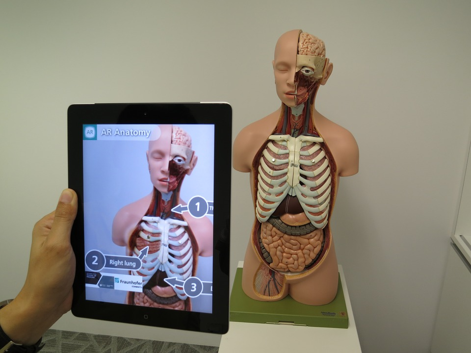Os saltos tecnológicos vão permitir novas formas de tratamento dos portadores de doenças reumatológicas