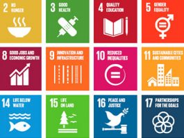 Ilustracao os 17 objetivos de desenvolvimento sustentável da ONU