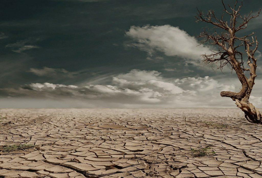 paisagem seca foto Pixabay