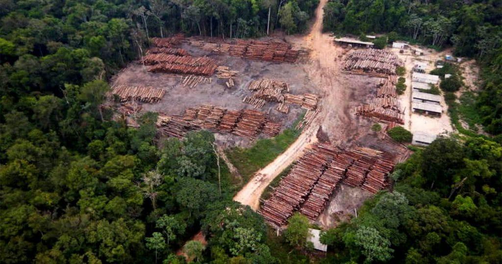área desmatada na floresta amazônica - foto Polícia Federal