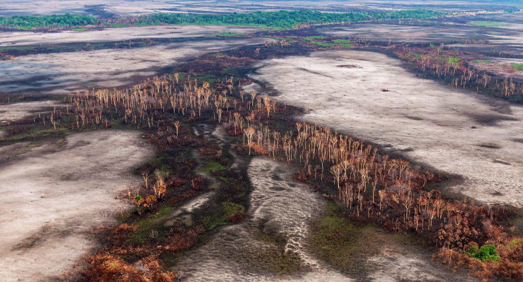 Confira as notas econômicas da semana  área desmatada na amazonia - foto Vinícius Mendonça / Ibama